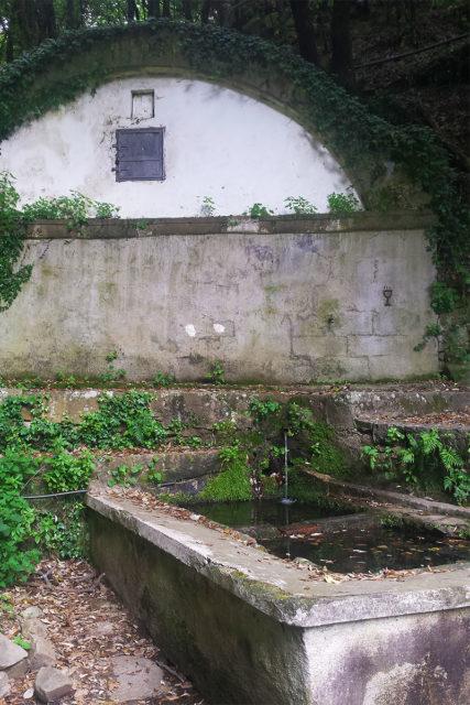 fontana di Nozzano (vicino Campiglia, in liguria)