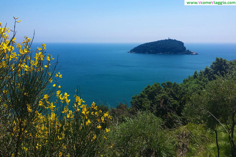 isola di Tino vista da Palmaria