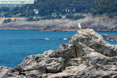 Vista sulle spiagge di Fiascherino