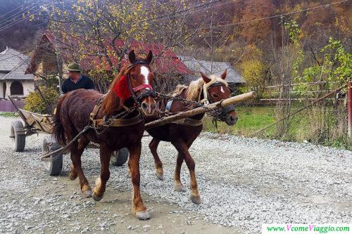 il paese di viseu de sus in Romania